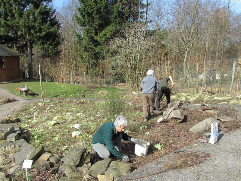 Freundeskreis Arbeit im Kräutergarten