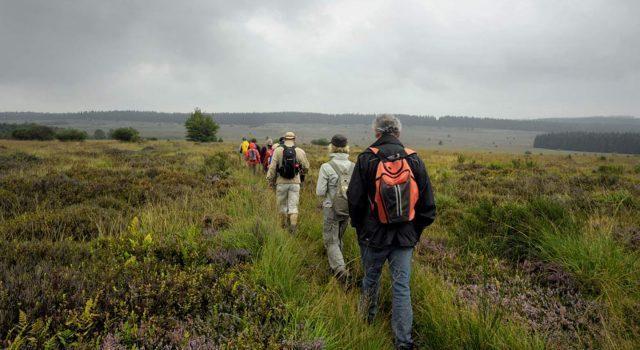 Groepswandelingen met een natuurgids
